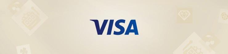 visa-704x164